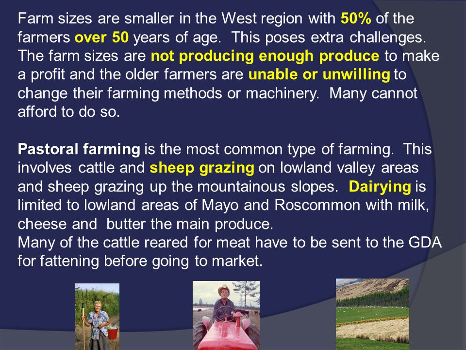 Farm sizes are smaller in the West region with 50% of the farmers over 50 years of age. This poses extra challenges. The farm sizes are not producing enough produce to make a profit and the older farmers are unable or unwilling to change their farming methods or machinery. Many cannot afford to do so.