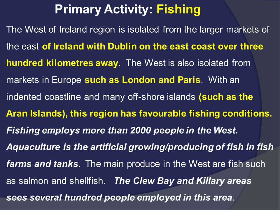 Primary Activity: Fishing