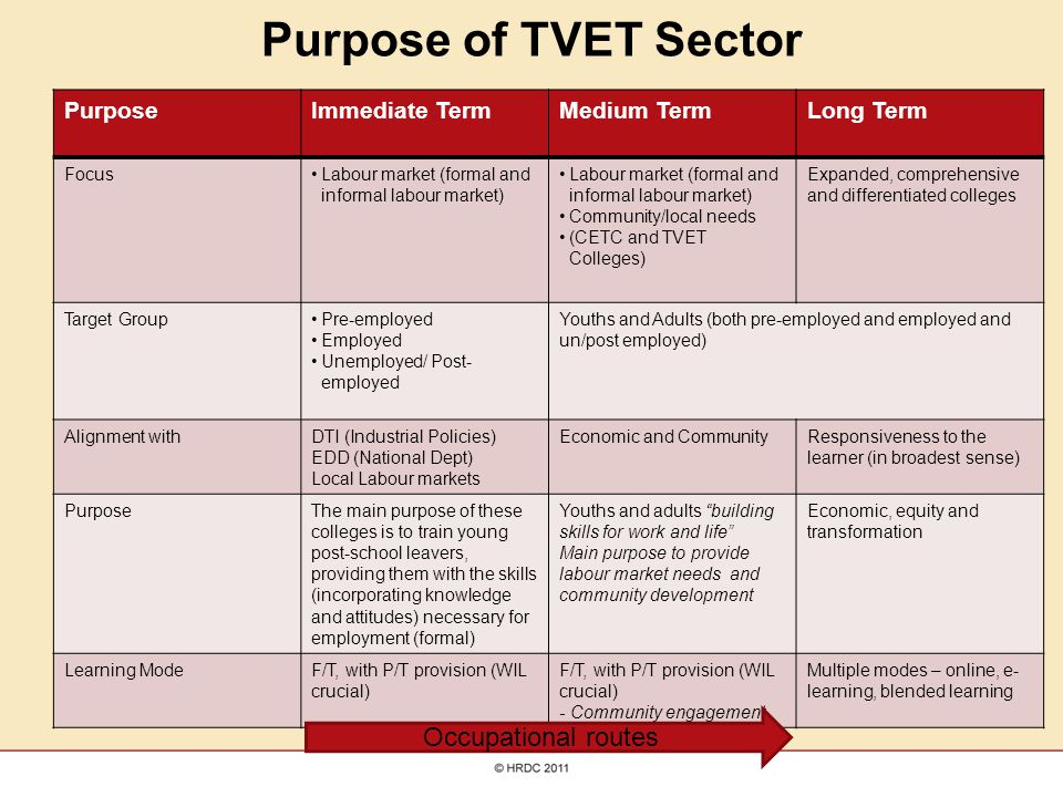 Purpose of TVET Sector Occupational routes Purpose Immediate Term