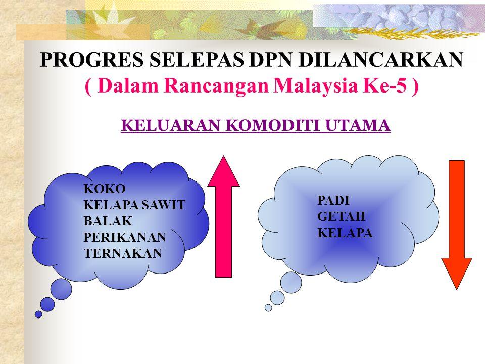PROGRES SELEPAS DPN DILANCARKAN ( Dalam Rancangan Malaysia Ke-5 )