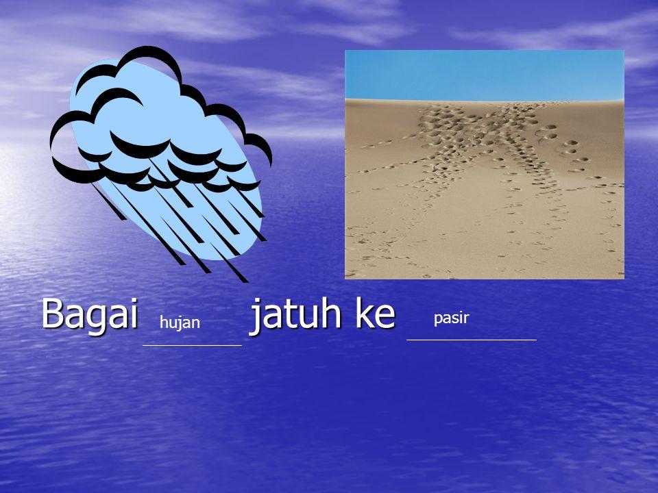Bagai jatuh ke pasir hujan