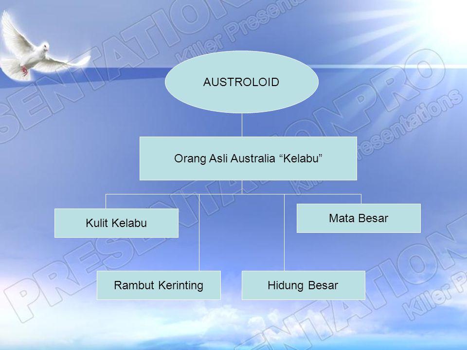 Orang Asli Australia Kelabu