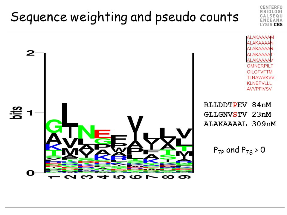 Sequence weighting and pseudo counts