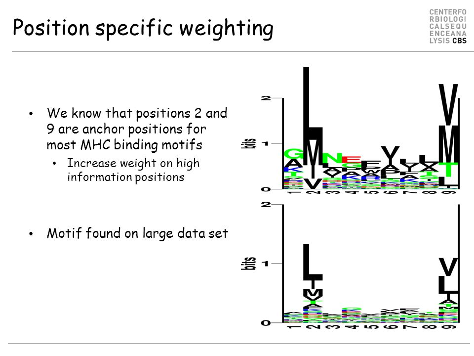 Position specific weighting