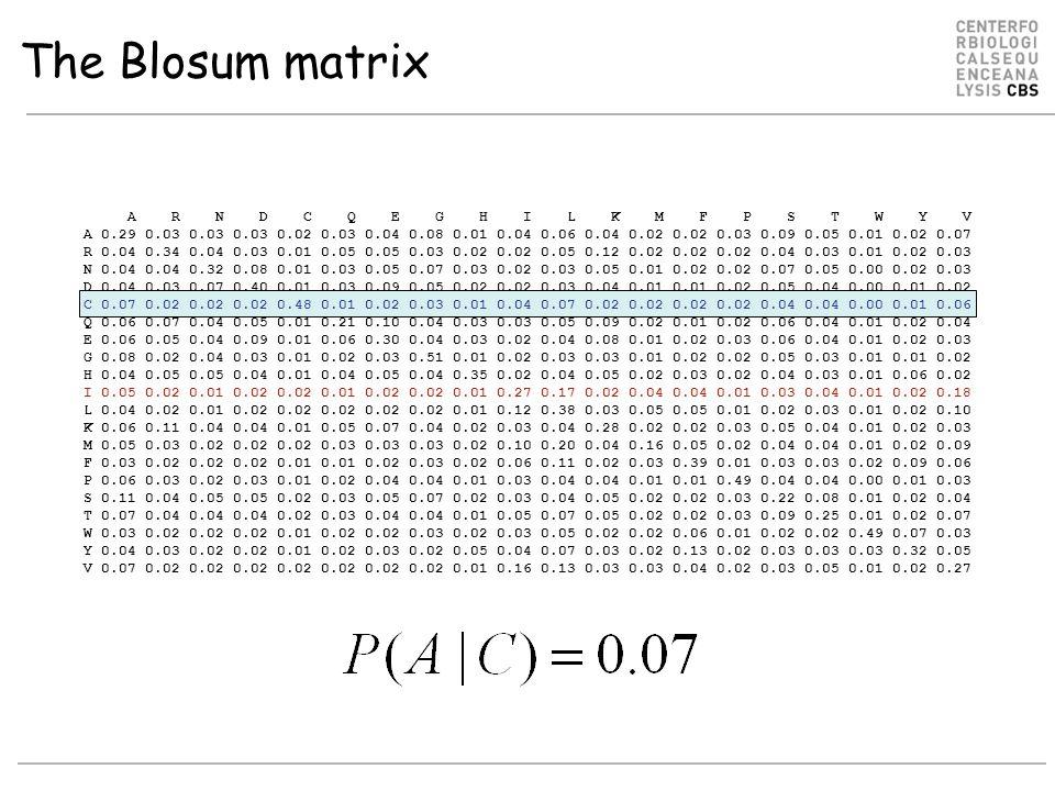 The Blosum matrix A R N D C Q E G H I L K M F P S T W Y V