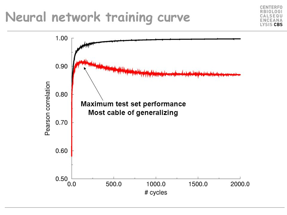 Neural network training curve