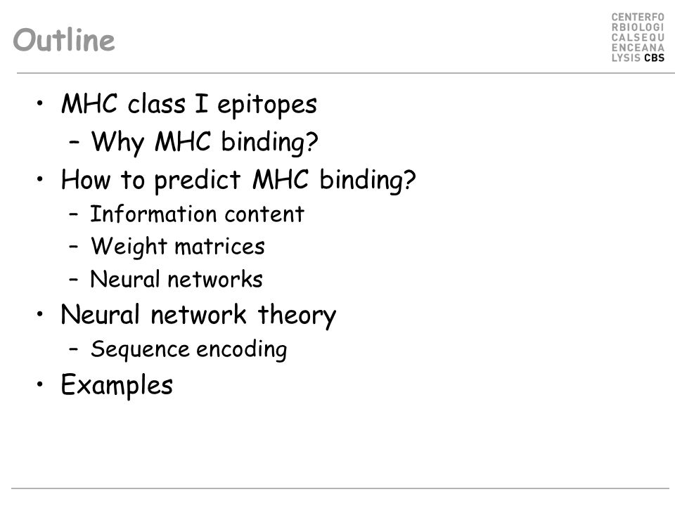 Outline MHC class I epitopes Why MHC binding