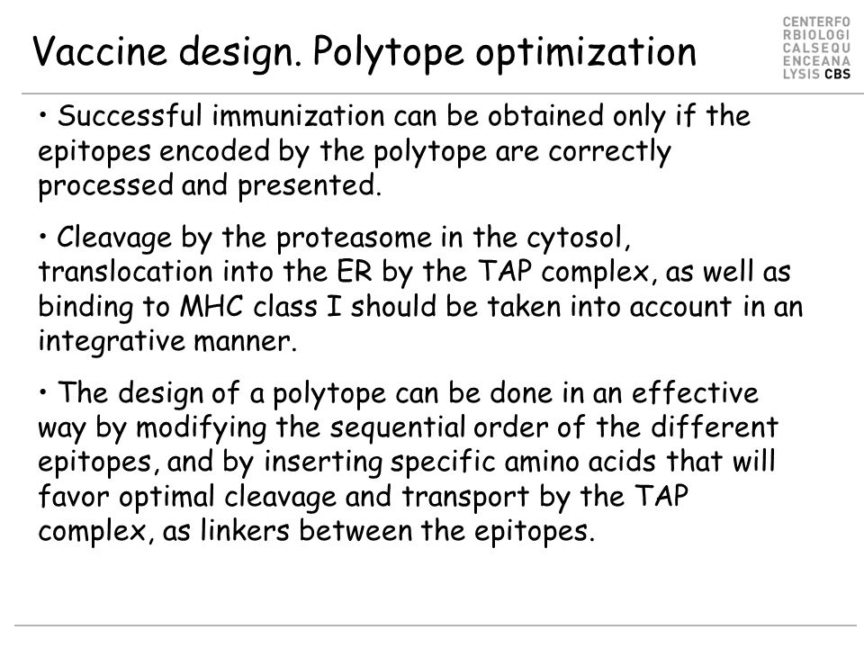 Vaccine design. Polytope optimization