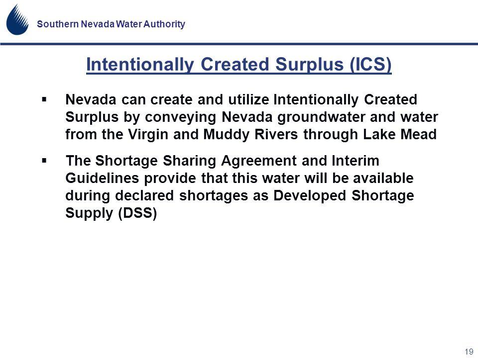 Intentionally Created Surplus (ICS)