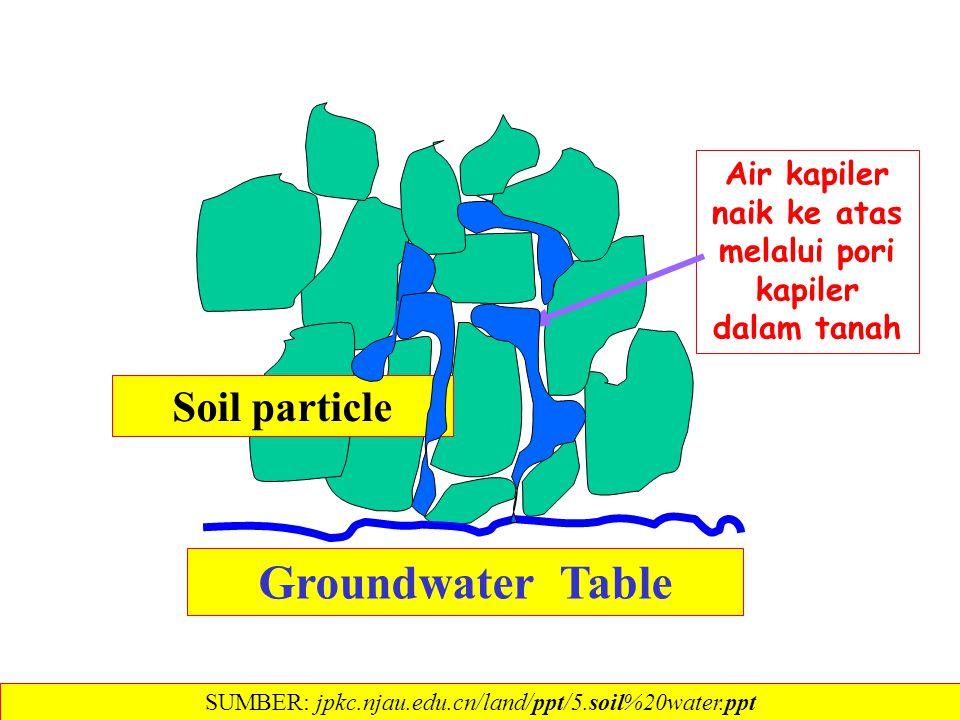 Air kapiler naik ke atas melalui pori kapiler dalam tanah