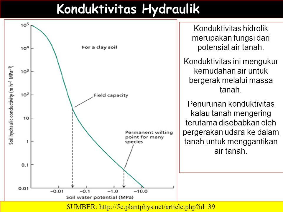 Konduktivitas Hydraulik
