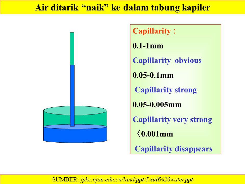 Air ditarik naik ke dalam tabung kapiler