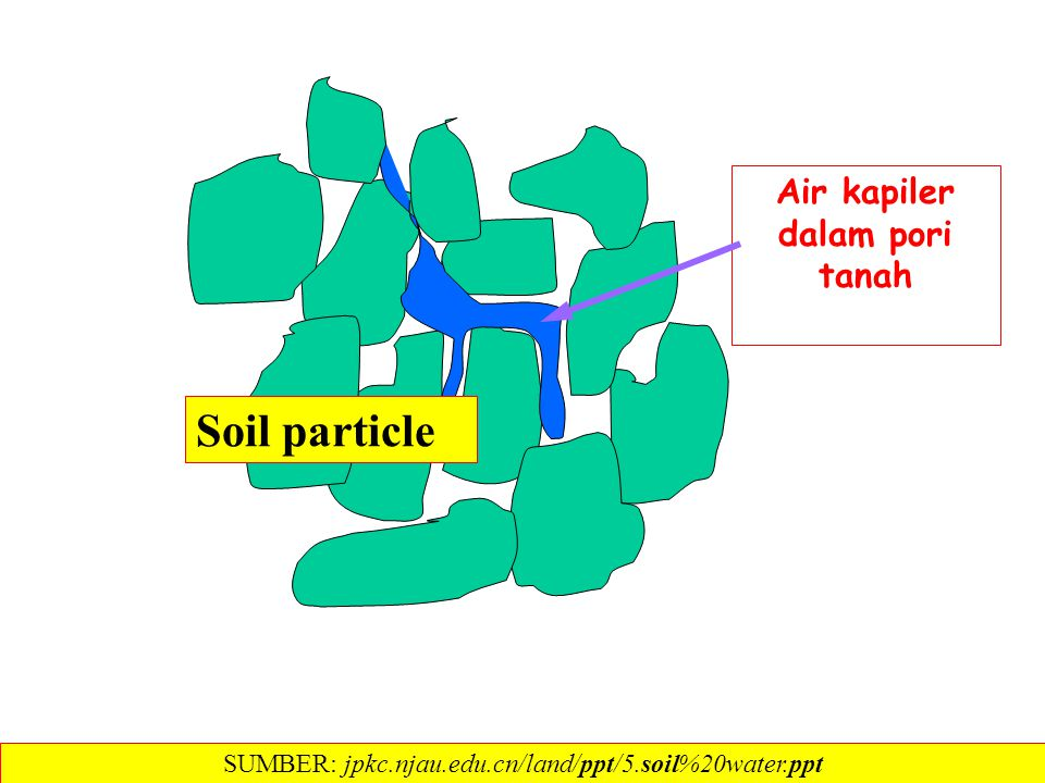 Air kapiler dalam pori tanah