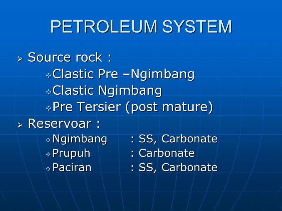 PETROLEUM SYSTEM Source rock : Clastic Pre –Ngimbang Clastic Ngimbang