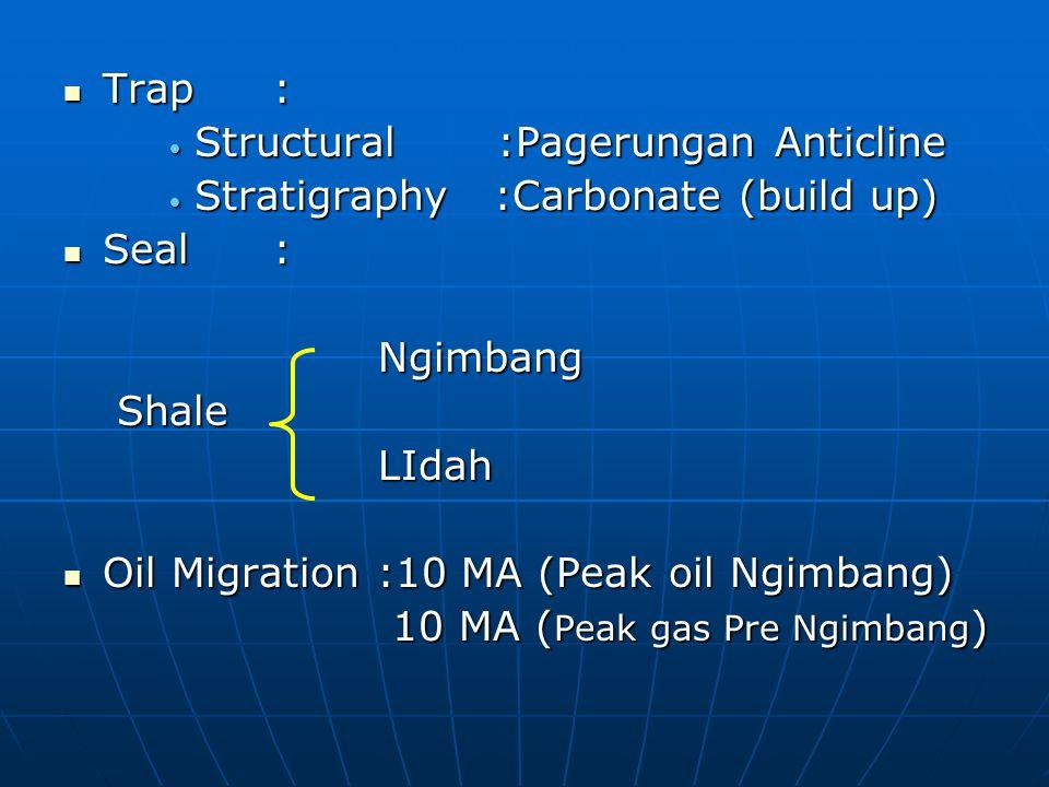 Trap : Structural :Pagerungan Anticline. Stratigraphy :Carbonate (build up) Seal : Ngimbang.