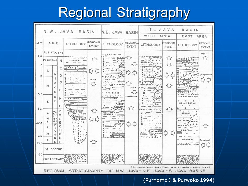 Regional Stratigraphy