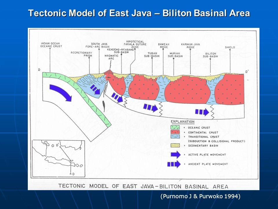 Tectonic Model of East Java – Biliton Basinal Area