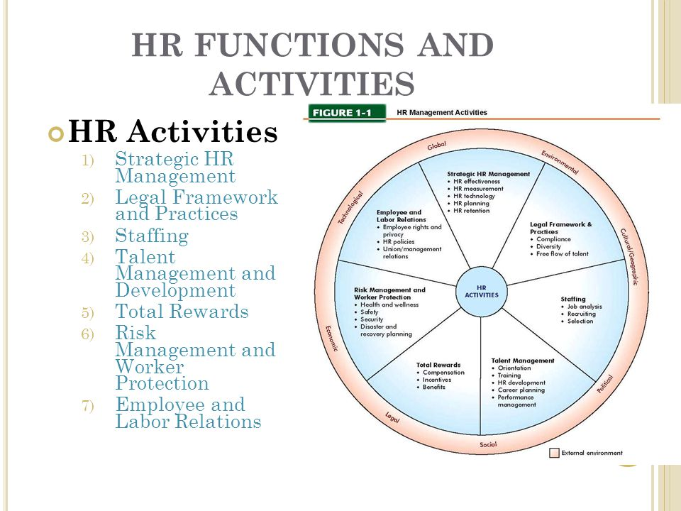 HR FUNCTIONS AND ACTIVITIES