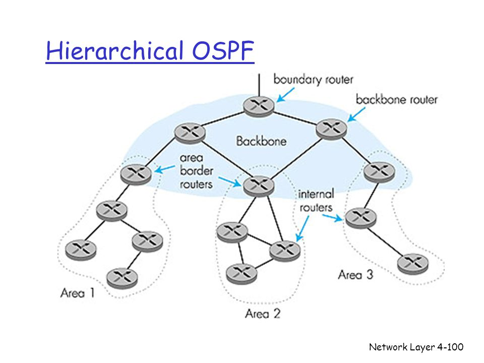 Hierarchical OSPF Network Layer