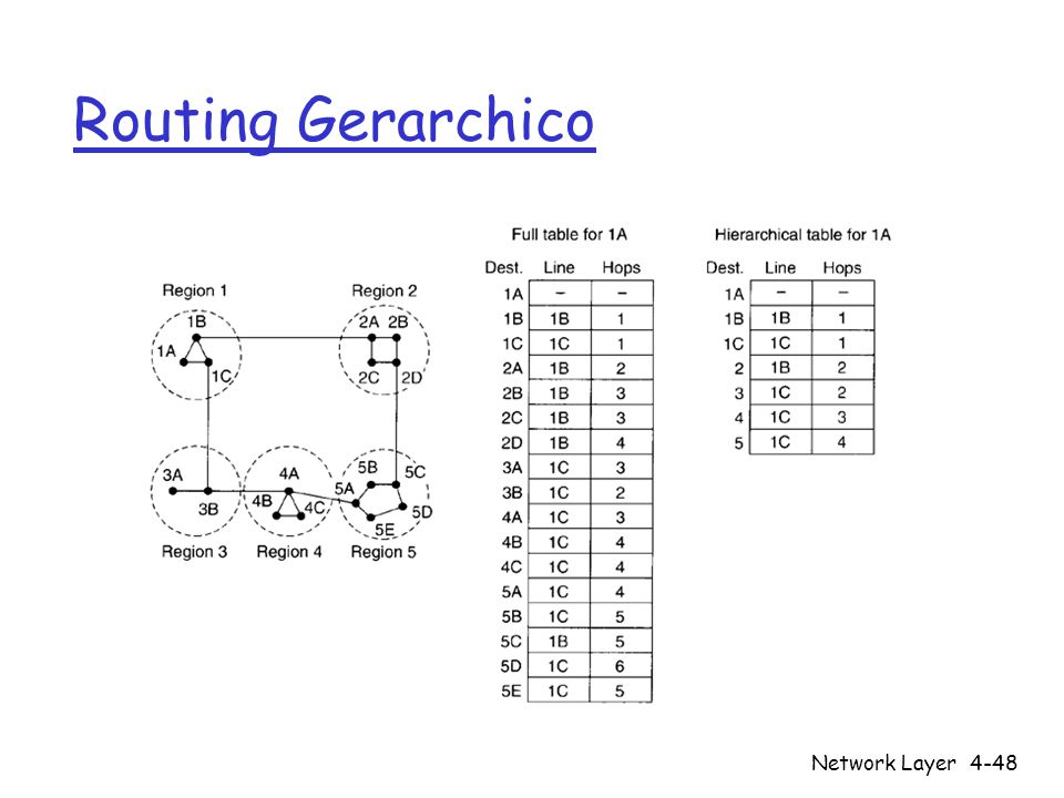 Routing Gerarchico Network Layer