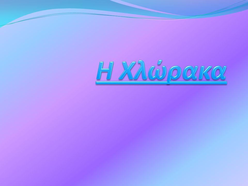 Η Χλώρακα