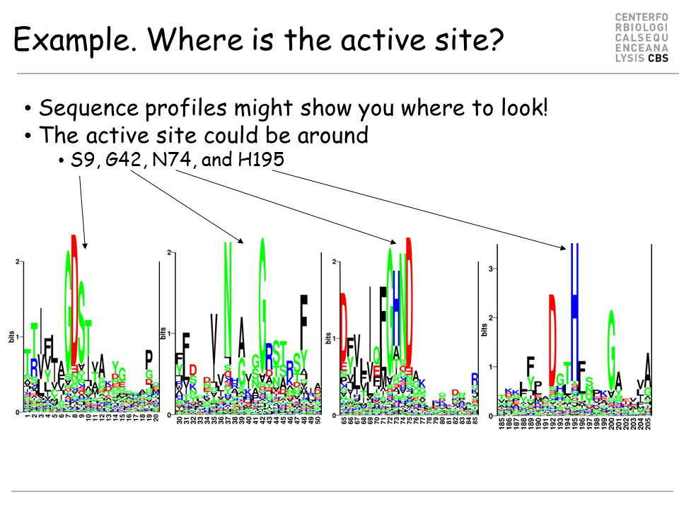 Example. Where is the active site