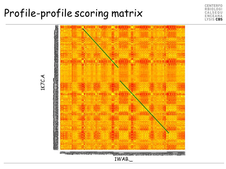 Profile-profile scoring matrix