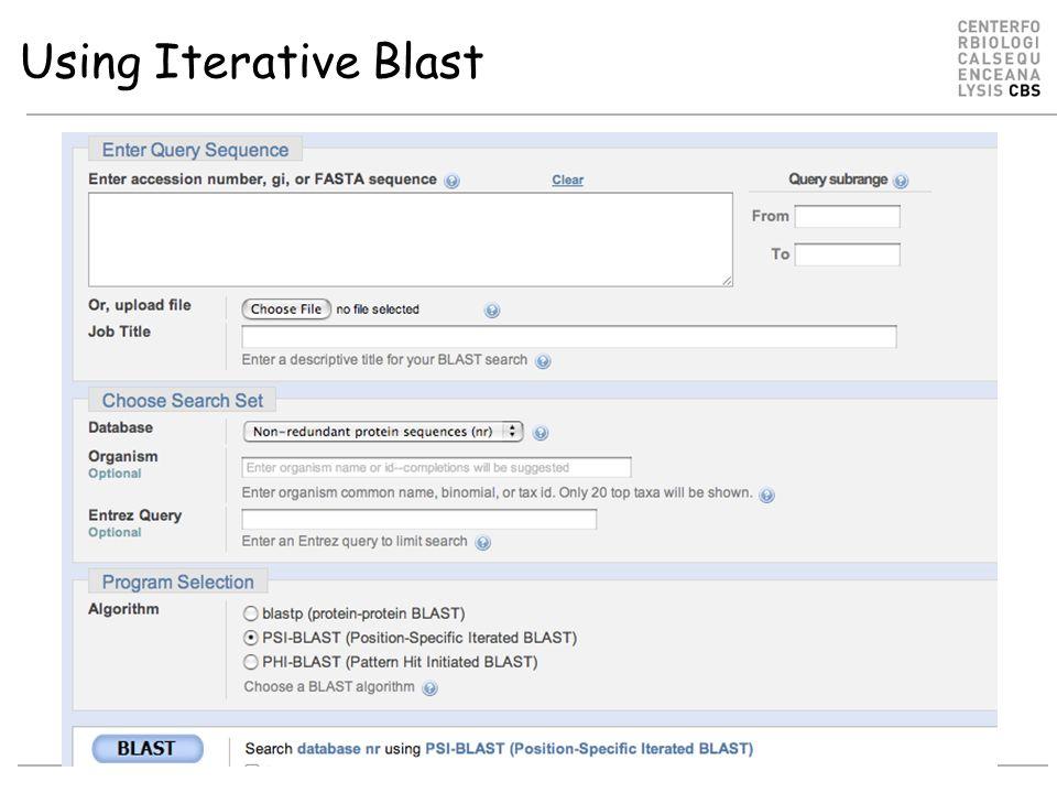 Using Iterative Blast
