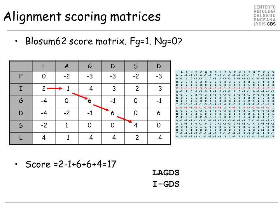 Alignment scoring matrices