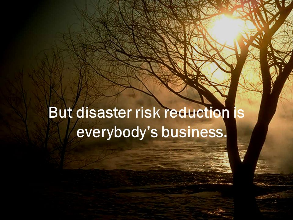 But disaster risk reduction is everybody's business.