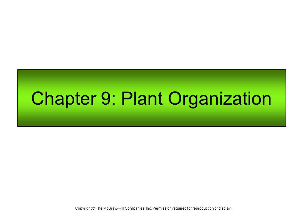 Chapter 9: Plant Organization
