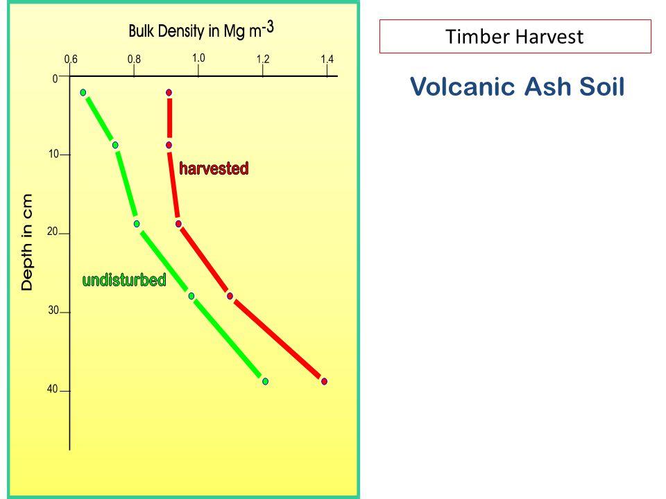 Timber Harvest Volcanic Ash Soil
