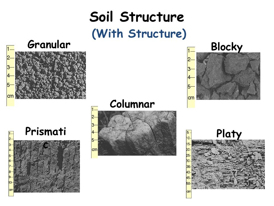 Soil Structure (With Structure) Granular Blocky Columnar Prismatic