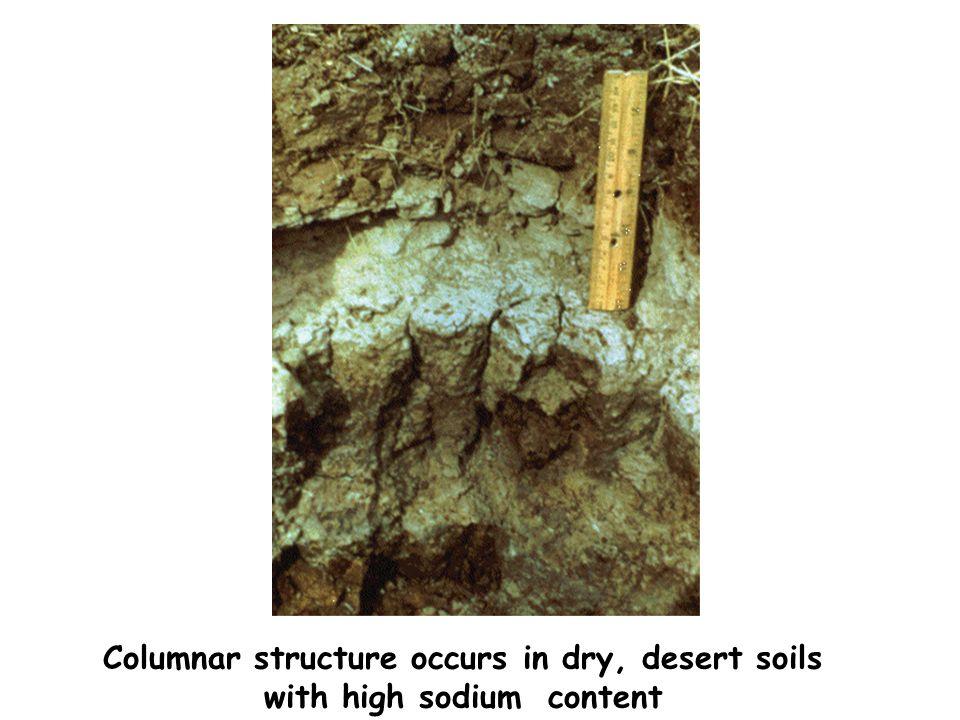 Columnar structure occurs in dry, desert soils
