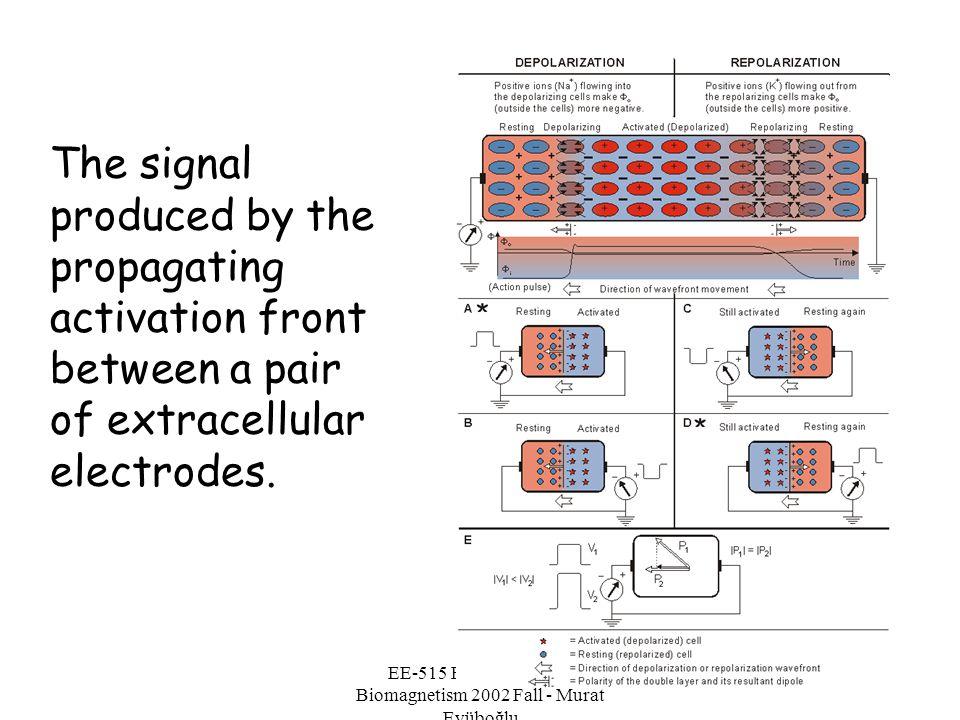 EE-515 Bioelectricity & Biomagnetism 2002 Fall - Murat Eyüboğlu