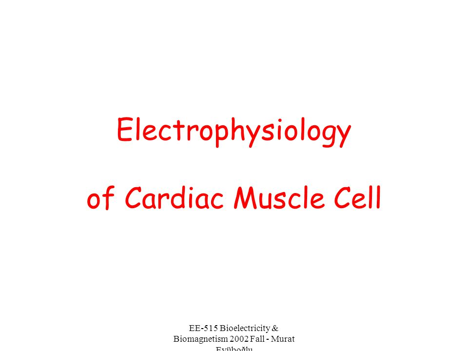 Electrophysiology of Cardiac Muscle Cell
