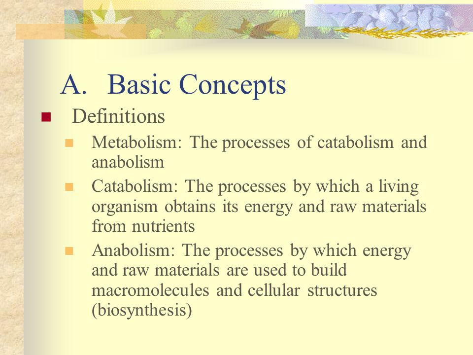 A. Basic Concepts Definitions