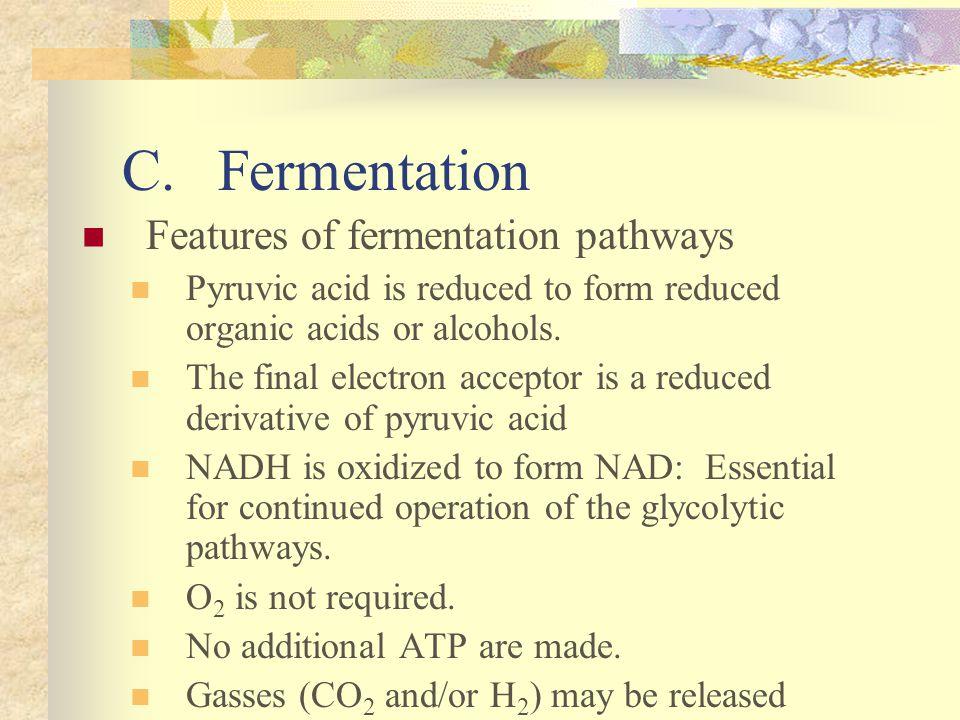 C. Fermentation Features of fermentation pathways