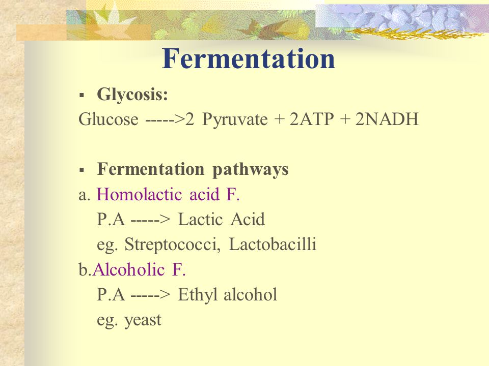 Fermentation Glycosis: Glucose ----->2 Pyruvate + 2ATP + 2NADH