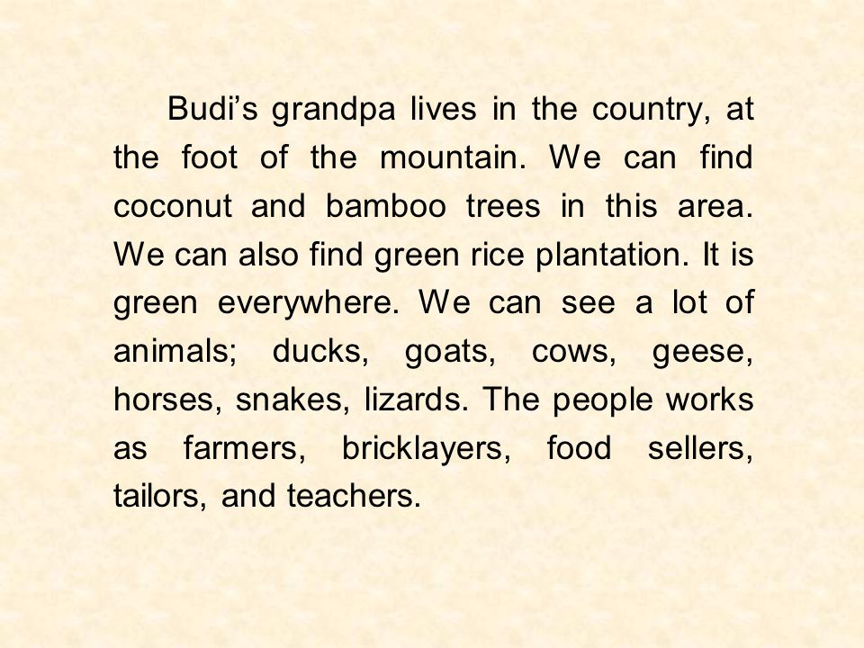 Budi's grandpa lives in the country, at the foot of the mountain