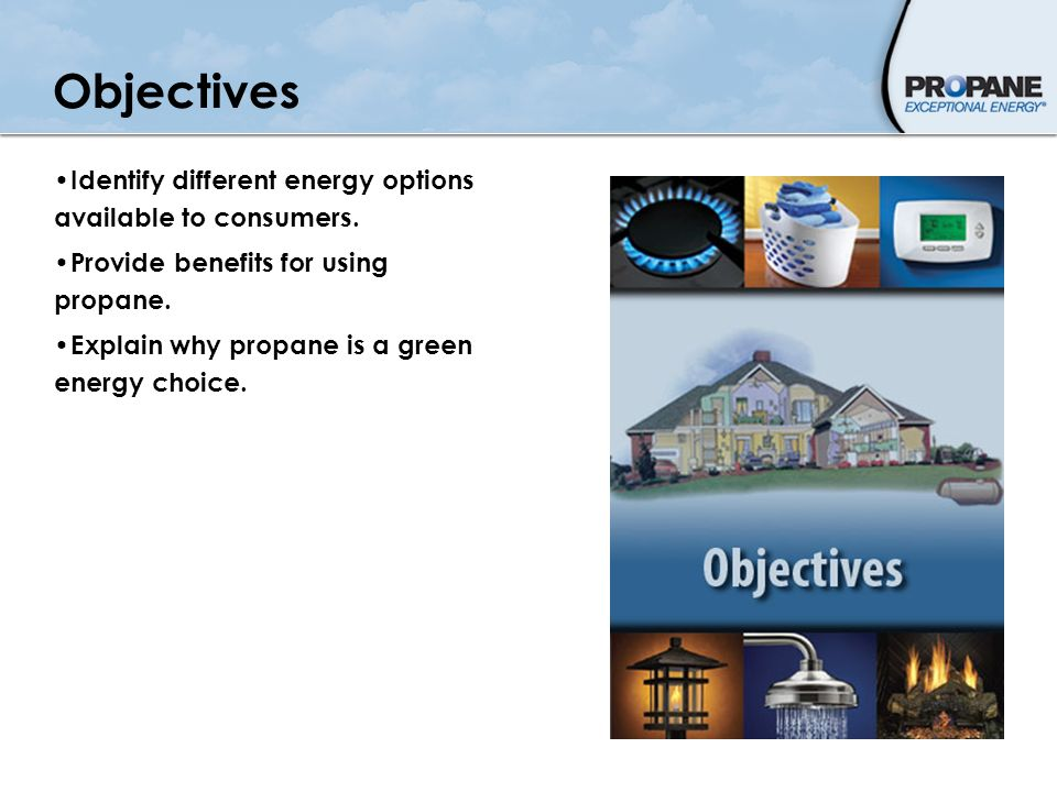 Objectives Identify different energy options available to consumers.
