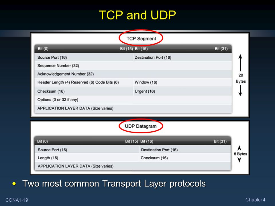 TCP and UDP Two most common Transport Layer protocols