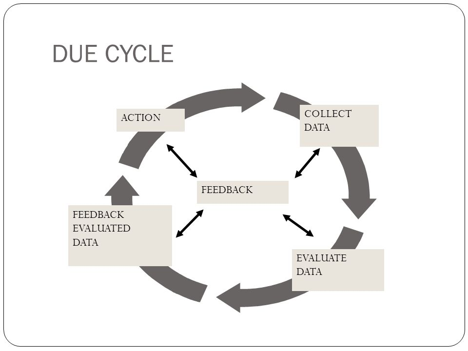 DUE CYCLE COLLECT ACTION DATA FEEDBACK FEEDBACK EVALUATED DATA
