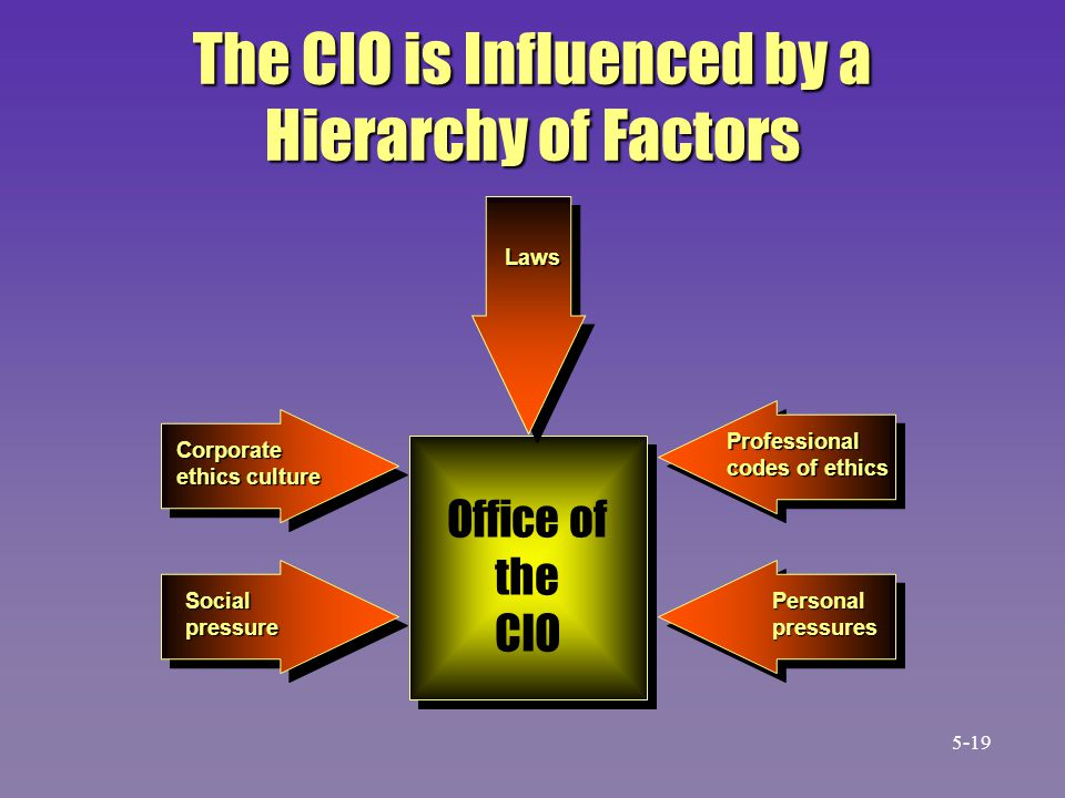 The CIO is Influenced by a Hierarchy of Factors