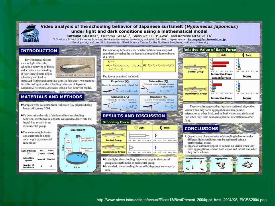 http://www.pices.int/meetings/annual/Pices13/BestPresent_2004/ppt_best_2004/KS_PICES2004.png