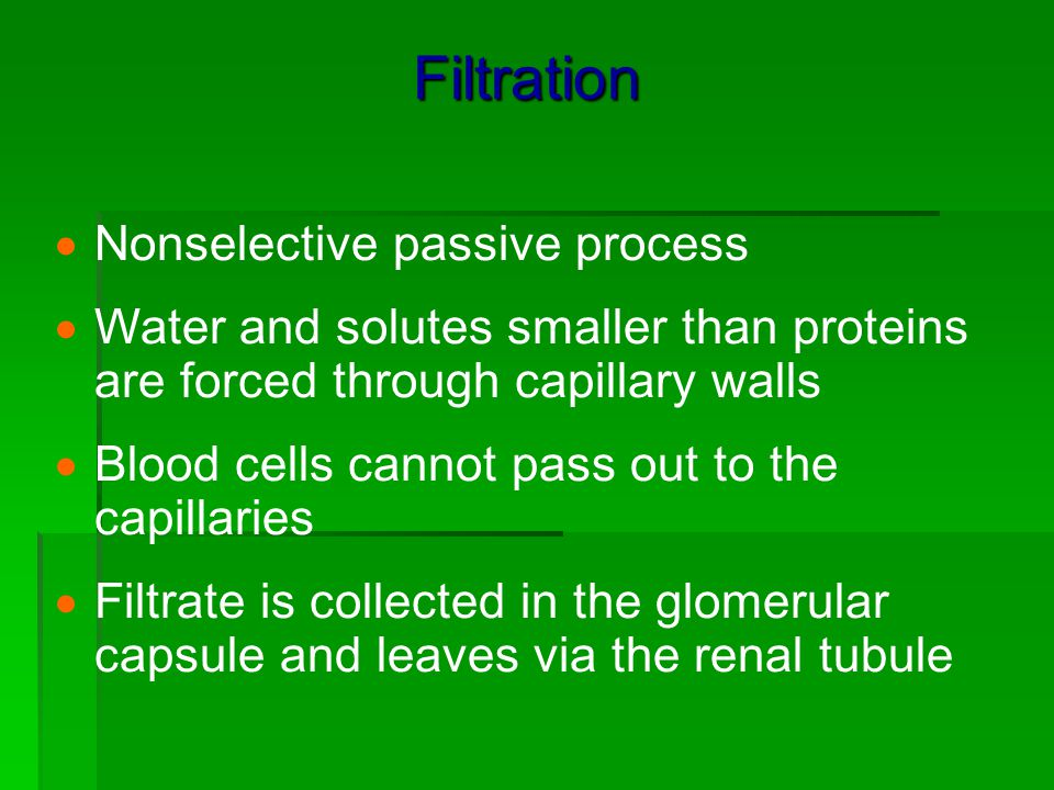 Filtration Nonselective passive process