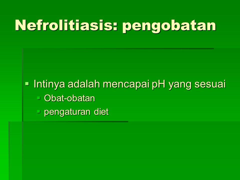 Nefrolitiasis: pengobatan