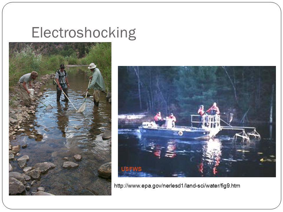Electroshocking USFWS