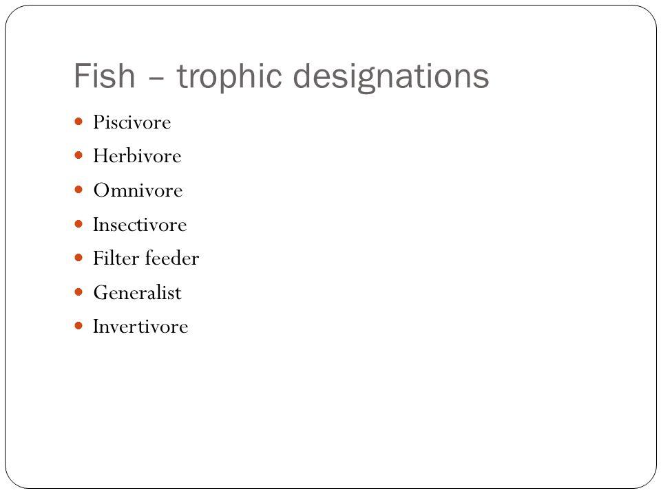 Fish – trophic designations