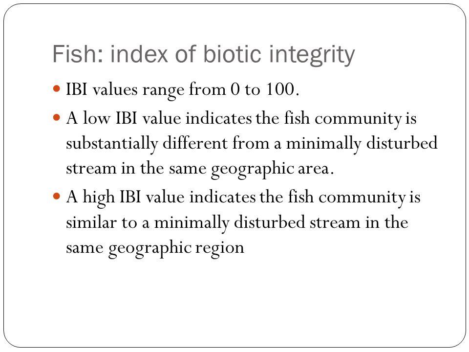 Fish: index of biotic integrity